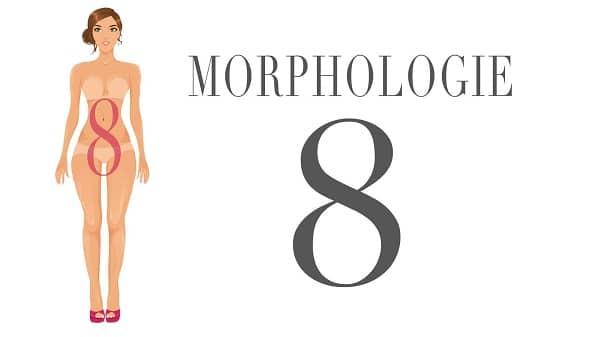 Morphologie-en-8