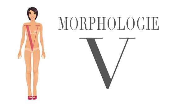 Morphologie-en-V